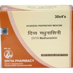 Дивя Мадхунашини Вати (Divya Madhunashini Vati) 120 таб